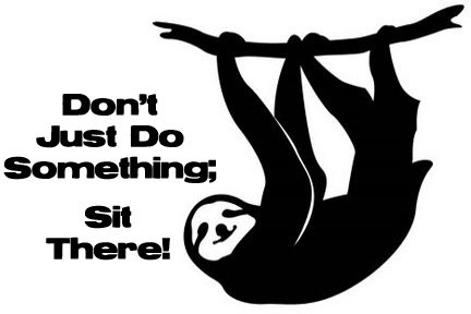 Dont just do something sloth vinyl wall decal