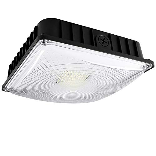(Luxrite 45W LED Canopy Light Fixture, 5180 Lumens, 250W HID/HPS Equivalent, 5000K Bright White, DOB, 120-277V, Dimmable, IP65 Waterpoof - Gas Station, Warehouse, Garage, Outdoor Commercial Lighting)
