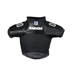 NFL Oakland Raiders Premium Pet Jersey, Small