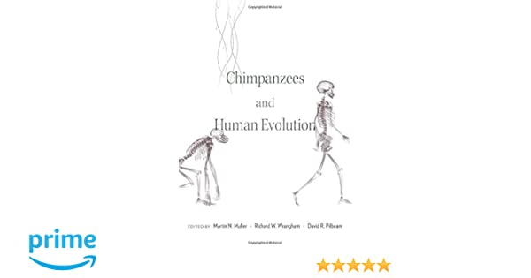 Chimpanzees and human evolution martin n muller richard w chimpanzees and human evolution martin n muller richard w wrangham david r pilbeam 9780674967953 amazon books fandeluxe Gallery