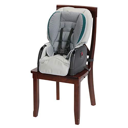 41M1dM yYYL - Graco Blossom 6 In 1 Convertible High Chair, Sapphire
