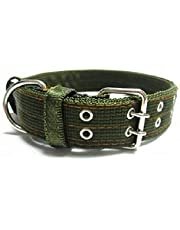 Dog Collar for large and extra large dog sizes - Green 2 lines Lock -Thick - Durable Nylon