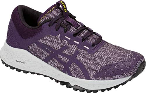 ASICS Women's Alpine XT Running Shoe, Astral/Night Shade, 8.5 B US ()