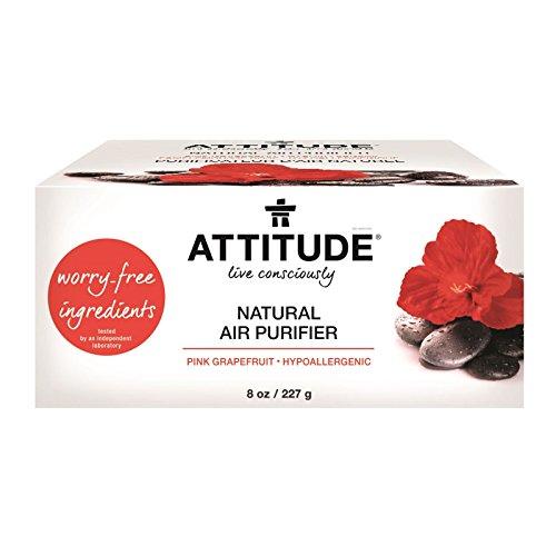 ATTITUDE, Natural Air Purifier, Pink Grapefruit, 8 oz (227 g) - 2pc