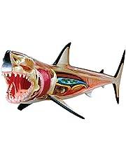 """4D Master Sky Net """"Great White Shark Anatomy Model 4D Vision Animal Anatomy Model"""