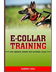 E-COLLAR TRAINING: Dog Obedience Training With Electronic Collar
