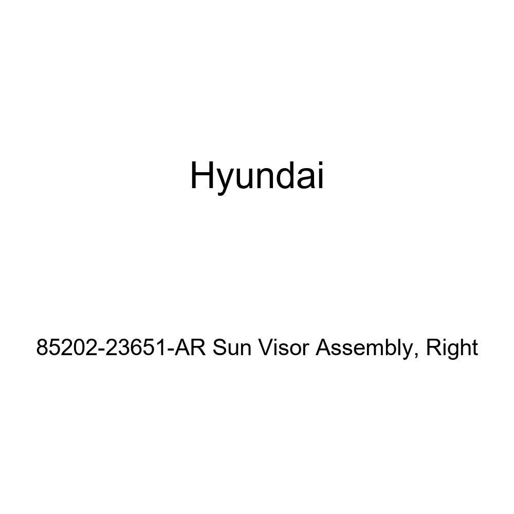 Right Genuine Hyundai 85202-23651-AR Sun Visor Assembly