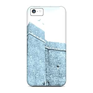 Shock Absorbent Cell-phone Hard Cover For Iphone 5c With Provide Private Custom Fashion Assassins Creed Pictures AlissaDubois
