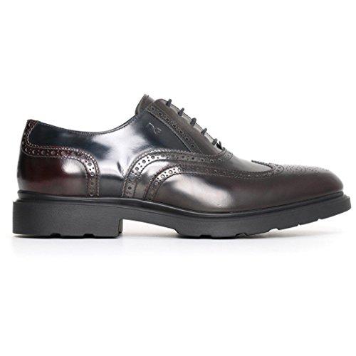 Giardini Bordeaux basses homme Sneakers Nero ZRqB8CnH