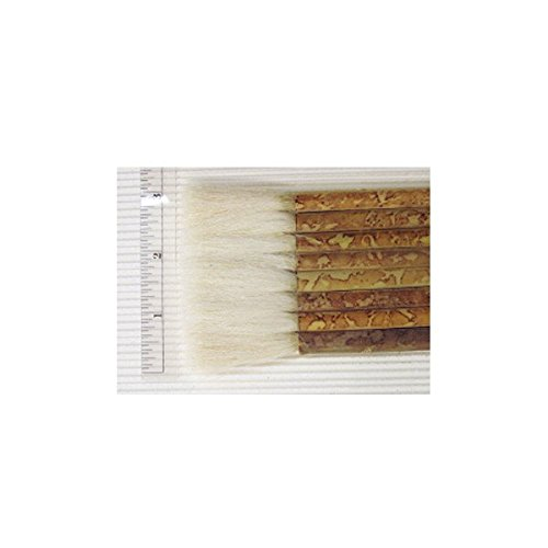 Best Hake Paintbrushes