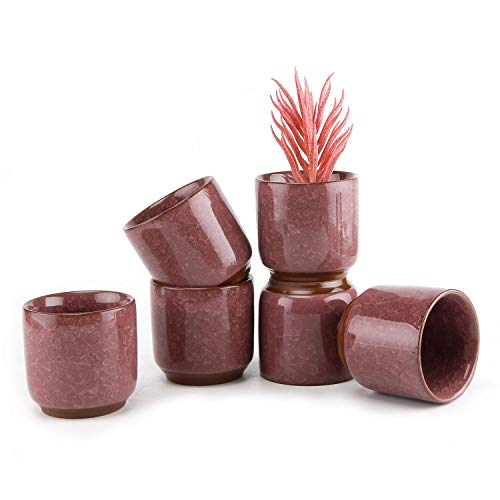 (T4U 2.5 Inch Ceramic Ice Crack Zisha Raised Serial succulent Plant Pot/Cactus Plant Pot Flower Pot/Container/Planter Purple Package 1 Pack of 6)