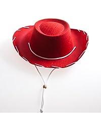Children's Red Felt Cowboy Hat