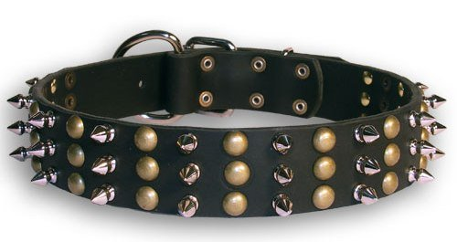 Dean and Tyler TOLERANCE , Dog Collar with Beautiful Brass Stud and Nickel Spikes Black Size 22-Inch by 1-1 2-Inch Fits Neck 20-Inch to 24-Inch