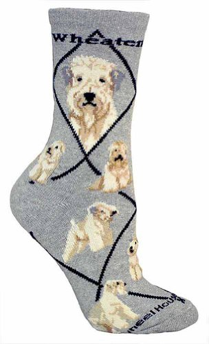 Wheel House Designs Women's Wheaten Terrier Socks made in New England