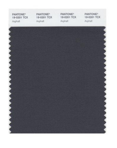 Pantone 19 0201 Tcx Smart Color Swatch Card Asphalt