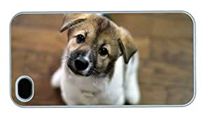 Hipster iPhone 4 case case mate covers Cute Look Puppy PC White for Apple iPhone 4/4S
