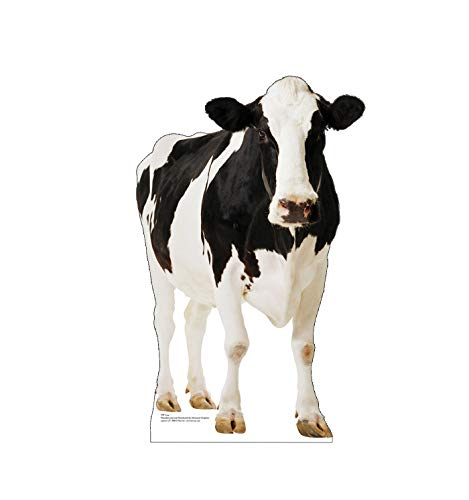 Advanced Graphics Cow Life Size Cardboard Cutout Standup from Advanced Graphics