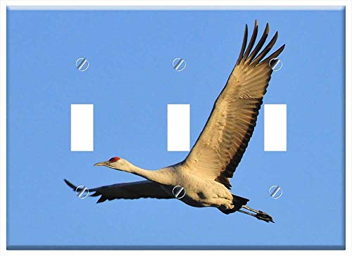 Cranes Cover - Switch Plate Triple Toggle - Sandhill Crane Flying Bird Wildlife Nature Sky