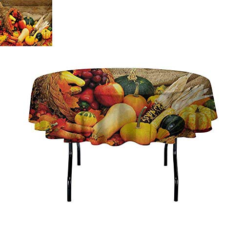 Gloria Johnson Harvest+Easy+to+Care+for+Leakproof+and+Durable+Round+tablecloths+Thanksgiving+Related+Foods+Scattered+on+Wooden+Table+Vegetables+Fruits+Outdoor+Picnic+D39.4+Inch+Vermilion+Brown+Green+