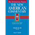 The New American Commentary - Isaiah 40-66: 15B