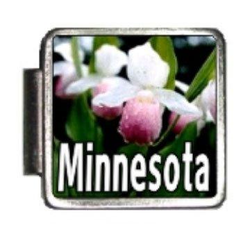 Minnesota State Flower Pink and White Lady's Slipper Photo Italian Charm Bracelet Link