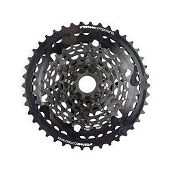 e*thirteen TRS Plus 10 speed 9-42t Cassette for XD Driver Freehubs, Black by e*thirteen