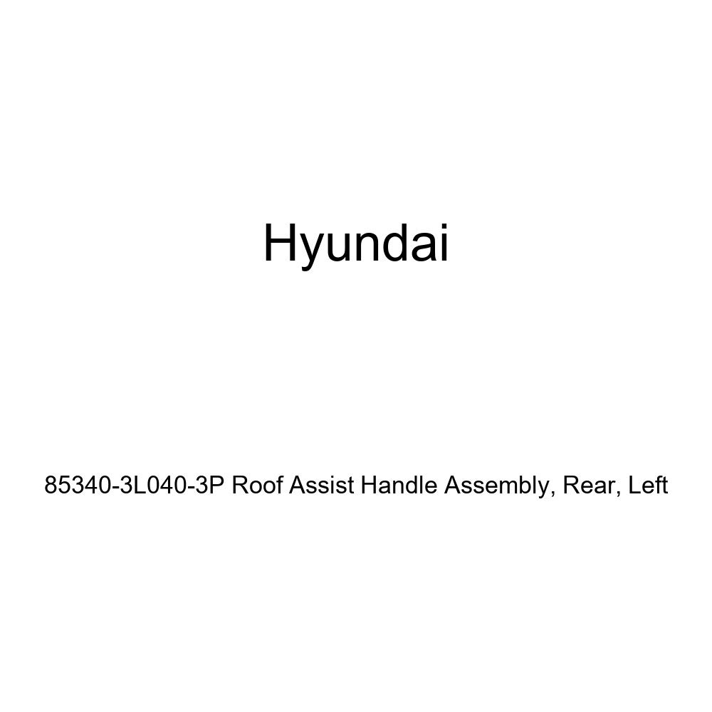 Genuine Hyundai 85340-3L040-3P Roof Assist Handle Assembly Rear Left