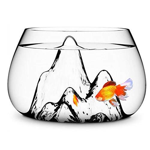 YPINGLI 25cm Glass Vase Fish Tank Goldfish Aquarium Bowl Terrarium Decoration Tool Accessories by YPINGLI