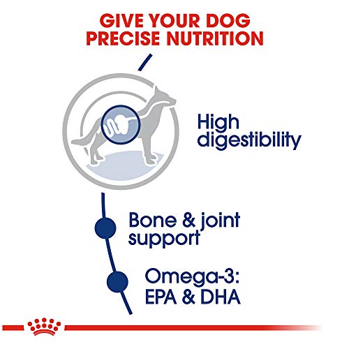 Royal-Canin-Size-Health-Nutrition-Maxi-Adult-Dry-Dog-Food
