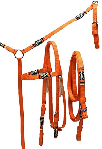 - D.A. Brand Deluxe Nylon Bridle/Breast Collar w/Braided Rawhide Trim Horse Tack(Neon Orange Draft)