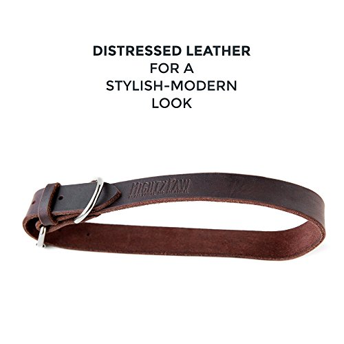 Pictures of Mighty Paw Leather Dog Collar Super Soft Brown 4
