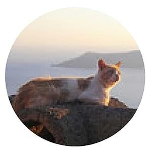 alfombrilla de ratón Gato cerca del mar al atardecer - ronda - 20cm