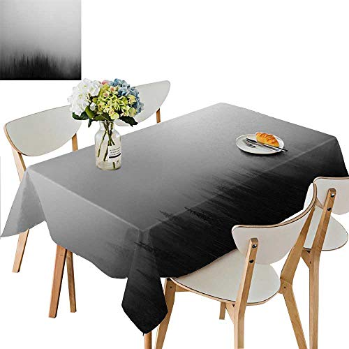 (UHOO2018 Square/Rectangle Polyester Table Cloth A Gray Piece of The Sky Easy Care Spillproof,54 x120inch. )