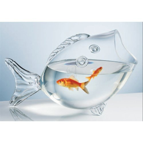 Bowl Arrangement (Deluxe Glass Fish Bowl Ideal Gift for Weddings, Spa, Aromatherapy. Flower arrangements, Clear Fish Shaped Bowl, Fish Tank Bowl)