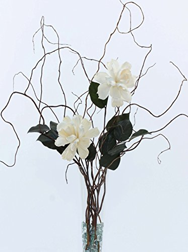 Green Floral Crafts DIY Giant White Peonies, Curly Willow and Salal - Vase NOT Included - Dried Flowers Centerpiece