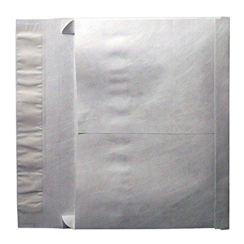 10 x 15 Tyvek Envelopes, 2