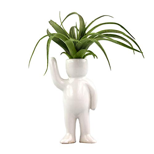 Ceramic Air Head People Planters - Air Plant Holders - Table Top Display Planters for Air Plants and Other Mini Plants ()