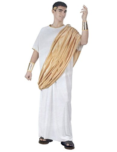 Men's Julius Caesar Costume