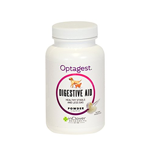 In Clover, OptaGest Clinical Digestive and Immune Support Powder for Dogs and Cats: 100 g. Bottle (150 servings)