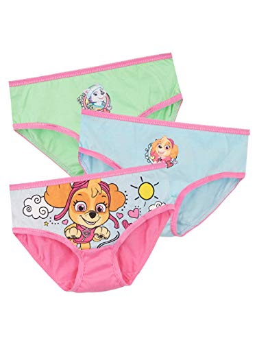 Paw Patrol Girls' Skye and Everest Underwear 3 Pack Size 2T Multicolored (Girls Nickelodeon Underwear)