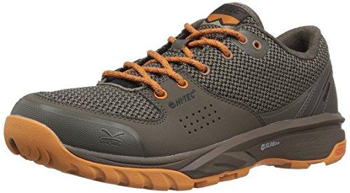 Shoe Inca Hi Gold Wildlife I Taupe Taupe Hiking Light V Men's Low Lite Tec qqB8TwZ6