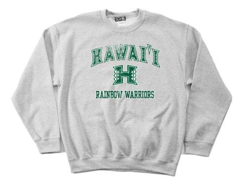 (NCAA Hawaii Rainbow Warriors 50/50 Blended 8-Ounce Vintage Mascot Crewneck Sweatshirt, Medium, Sport Grey)