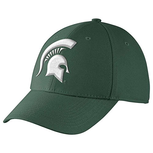 (Michigan State Spartans Dri-FIT Swoosh Flex Cap)