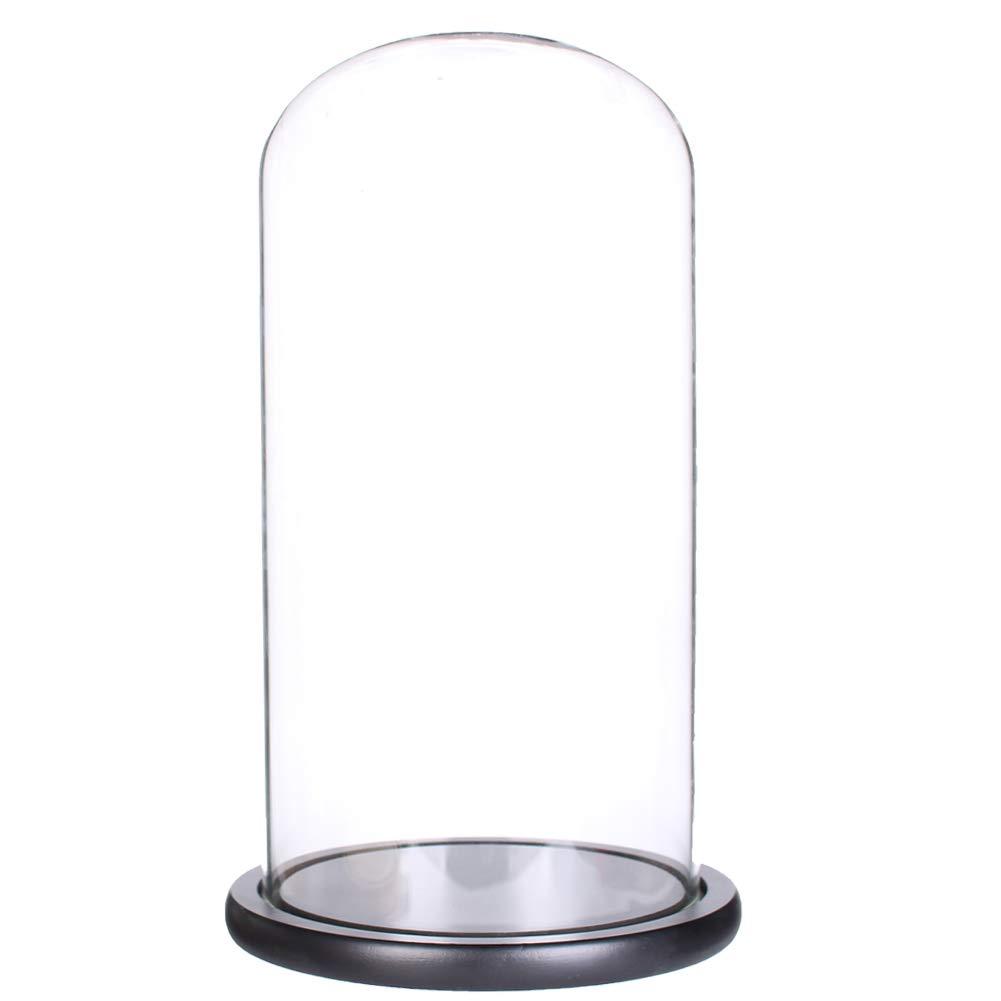 Siyaglass Glass Display Dome Cloche with Black Wood Base (5.9x11.8)