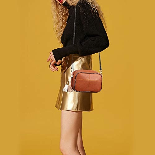 Lightweight Small Crossbody Bag with Tassel Women's Cell Phone Purse Shoulder Bag