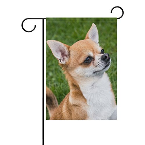 Blue Viper Chihuahua Dog Garden Flag Banner 12 x 18 Inch Decorative Garden Flag for Outdoor Lawn and Garden Home Décor Double-Sided