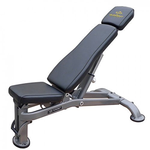 Element Fitness Commercial Multi Adjustable Bench