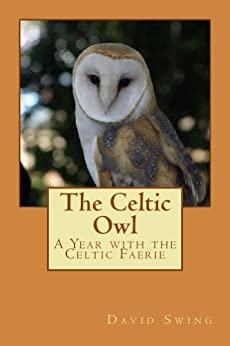 The Celtic Owl: A Year with the Celtic Faerie by [Swing, David]