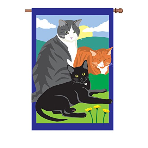 Premier Kites 54302 Prestige Flag, Kitty Kitty Kitty, 36 by 52-Inch ()