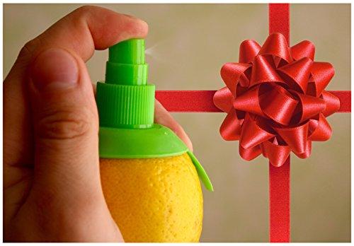 fresh-fruit-infusion-citrus-sprayer-bpa-free-manual-lemon-lime-orange-pump-enjoy-a-fresh-citrus-infu